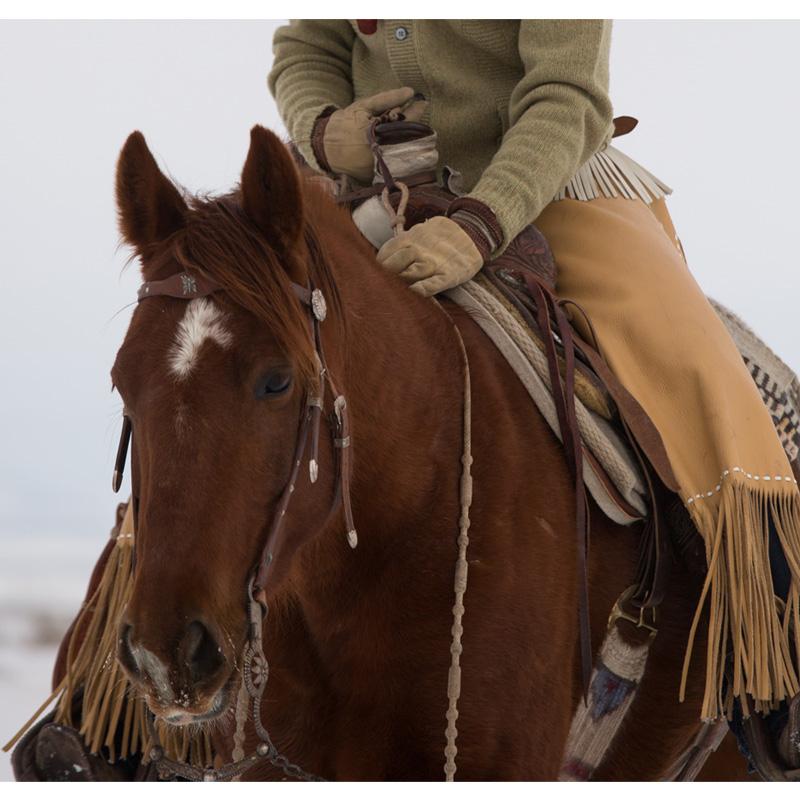 El Freno- A Horseman's Treasure